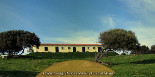 Azienda Agricola - Bed and Breakfast